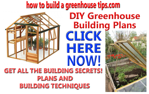 Greenhouse_banner3_copy